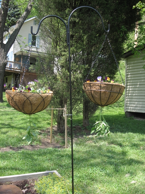"Leah submitted ""Hanging Planters"""